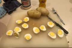The eggs and potatoes were pretty much idiot-proof in the Instant Pot!